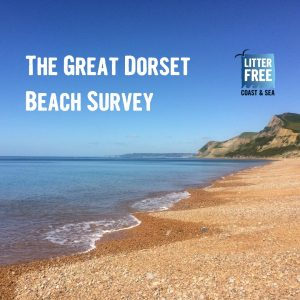 Great Dorset Beach Survey